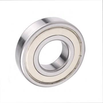 NSK 6004ddu deep groove ball bearing 6004RS 6004 2RS 6004ZZ Long life